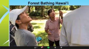 Slide of awardee Forest Bathing Hawaii